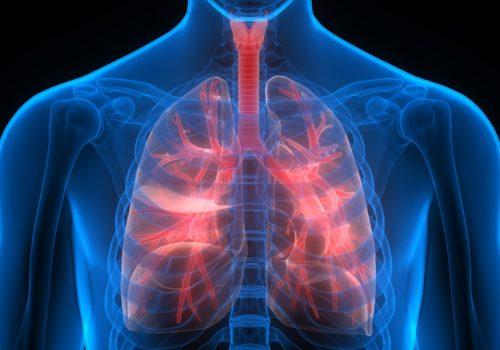 Bronchospasmolyse